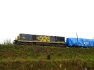 Transportes especiais na MRS Logística